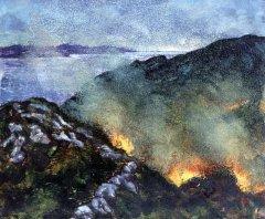 Beara Fires