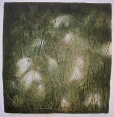 Summer Bog 1